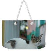 Kitten Reflections Weekender Tote Bag