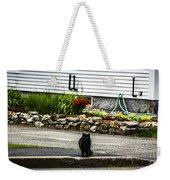 Kitty Across The Street  Weekender Tote Bag