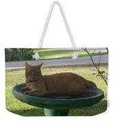 Kitty Bird Bath Weekender Tote Bag