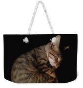 Kitty Cat Curls Up Weekender Tote Bag