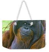 Knowing Smile Weekender Tote Bag