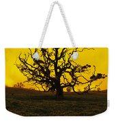 Koa Tree Silhouette Weekender Tote Bag