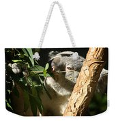 Koala Bear 3 Weekender Tote Bag