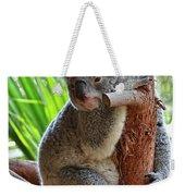 Koala Mama Weekender Tote Bag