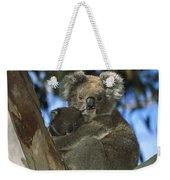 Koala Phascolarctos Cinereus Mother Weekender Tote Bag