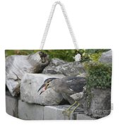 Koi For Dinner  Weekender Tote Bag