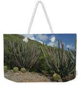 Koko Crater Cacti Weekender Tote Bag