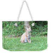 Ks Bobcat Weekender Tote Bag