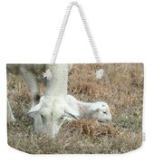 L Is For Lamb Weekender Tote Bag