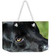 Lab Mix Weekender Tote Bag