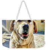 Labrador Weekender Tote Bag