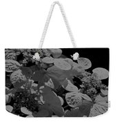 Lace Cap Hydrangea In Black And White Weekender Tote Bag
