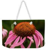 Lacewing On Echinacea Blossom Weekender Tote Bag