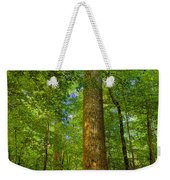 Lady And The Tree Weekender Tote Bag