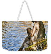 Lady And Water Weekender Tote Bag