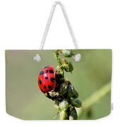 Lady Beetle Weekender Tote Bag