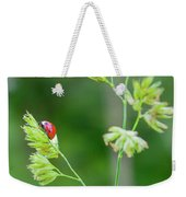 Lady Bird On A Herb Straw Close Up Weekender Tote Bag