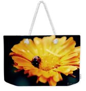 Lady Bug Walking The Line Weekender Tote Bag