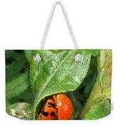 Lady Bugs Weekender Tote Bag
