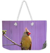 Rare Yellow Cardinal On A Cherry Branch Weekender Tote Bag