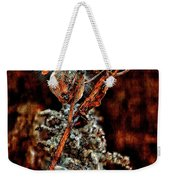 Lady Of The Dance II  Weekender Tote Bag