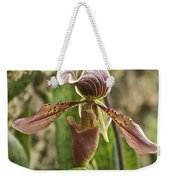 Lady Slipper 2 Weekender Tote Bag