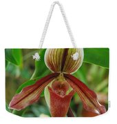 Lady Slipper Weekender Tote Bag