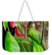 Lady Slippers Weekender Tote Bag