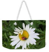 Ladybug On Daisy Weekender Tote Bag
