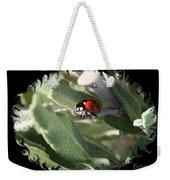 Ladybug On Sage With Swirly Framing Weekender Tote Bag
