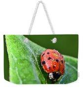Ladybug With Dew Drops Weekender Tote Bag