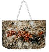 Ladybugs En Masse Weekender Tote Bag
