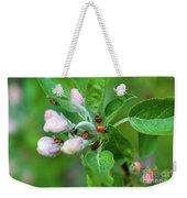 Ladybugs On Apple Blossoms Weekender Tote Bag