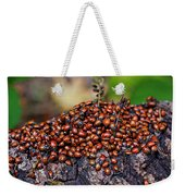 Ladybugs On Branch Weekender Tote Bag by Garry Gay