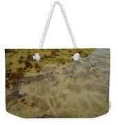Lago Transparente Weekender Tote Bag