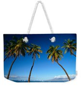 Lahaina, Five Coconut Tre Weekender Tote Bag