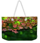 Laid Upon The Branches Weekender Tote Bag