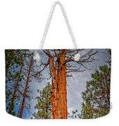 Lake Tahoe Trees On 89  Weekender Tote Bag