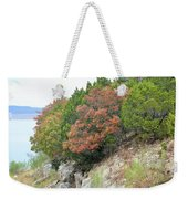 Lake034 Weekender Tote Bag