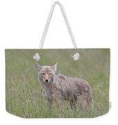 Lamar Valley Coyote Weekender Tote Bag
