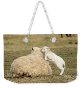 Lamb Jumping On Mom Weekender Tote Bag