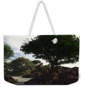Landscape 082510 Weekender Tote Bag