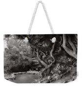 Landscape - The Forbidden Forest Weekender Tote Bag