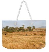Landscape With Cows Grazing In The Field . 7d9957 Weekender Tote Bag
