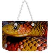 Langsdorfs Coralsnake Weekender Tote Bag