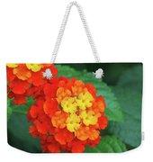 Lantana Bandana Red Flower Weekender Tote Bag