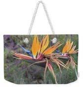 Large Bird Of Paradise Flower In Full Bloom  Weekender Tote Bag
