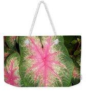 Large Coleus Plant Weekender Tote Bag