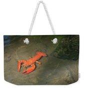 Large Crawdad Weekender Tote Bag