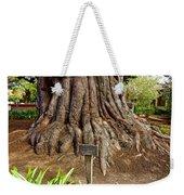 Large Cypress Tree Trunk In Carmel Mission-california  Weekender Tote Bag